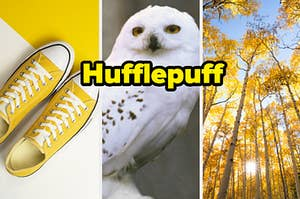 """A pair of sneakers are on the left with a Hogwarts owl in the center labeled """"Hufflepuff"""""""