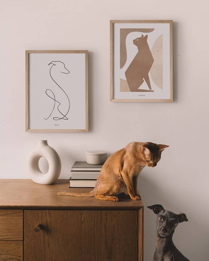 cat and dog sitting below minimal art of themselves