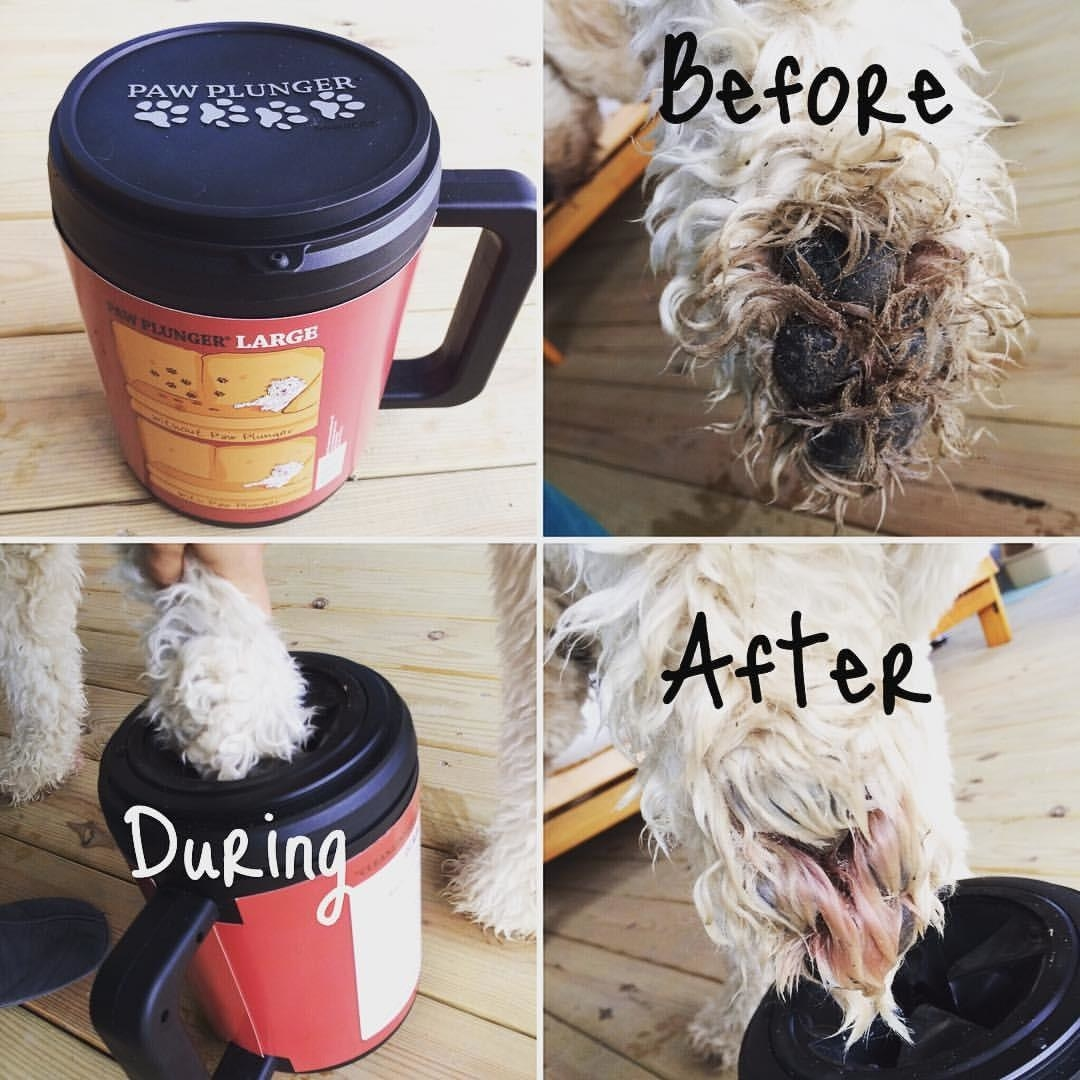 Reviewer's photos of using the paw plunger with their Goldendoodle