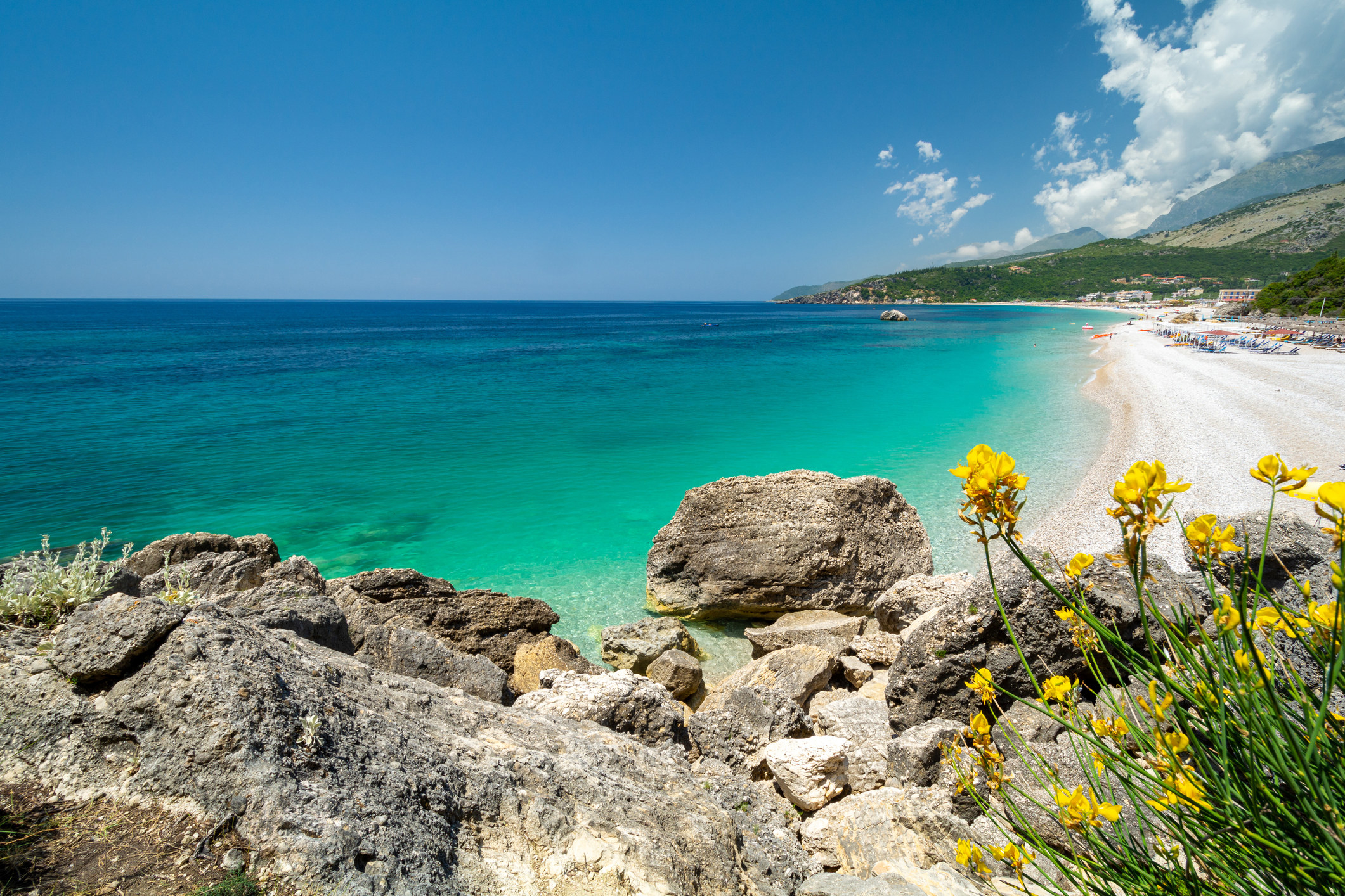 A white sand beach with bright blue water, and rocks and wildflowers in the foreground