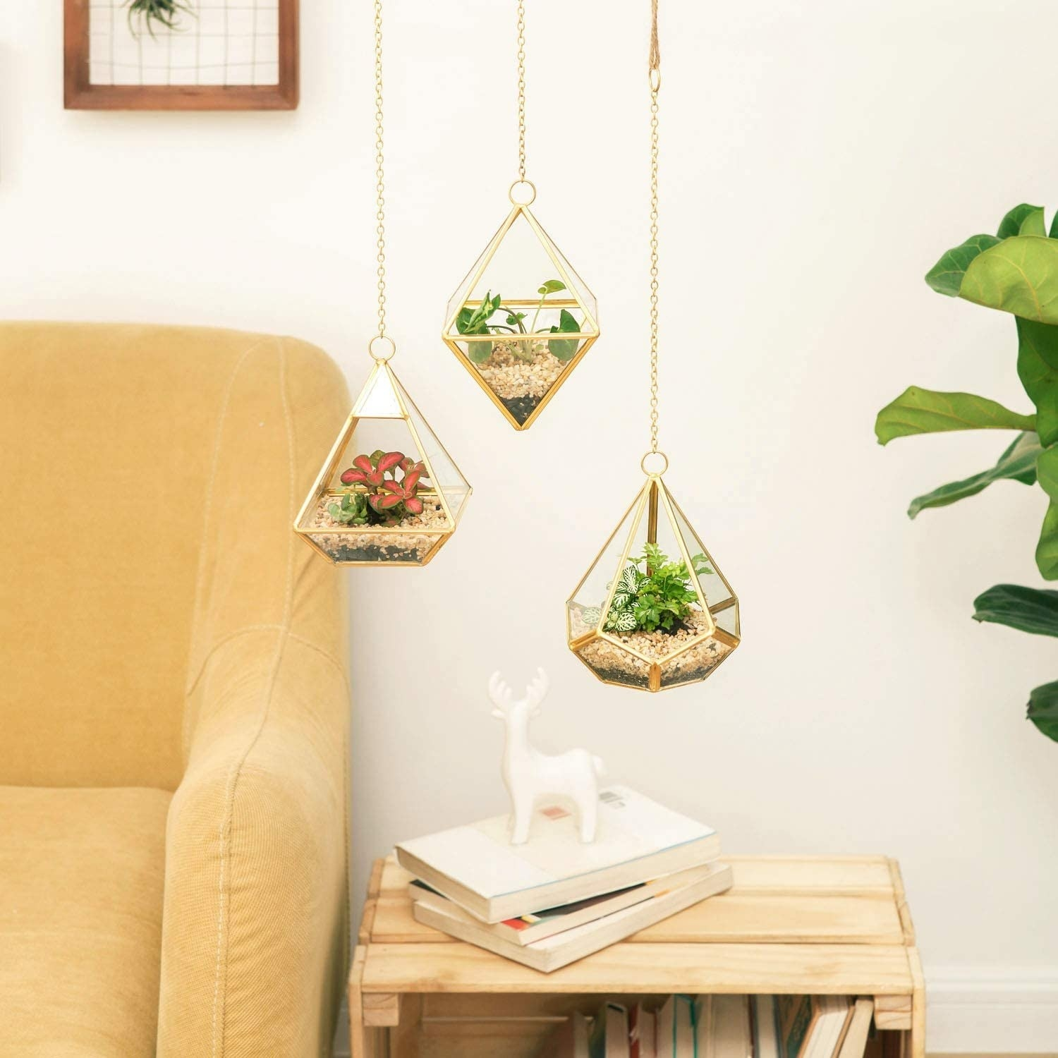 Three geometric hanging terrariums with plants inside in a living room
