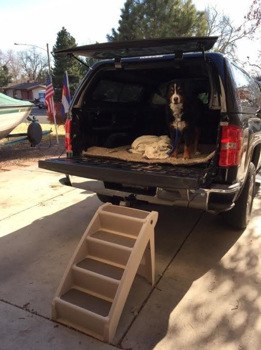 The set of foldable pet stairs