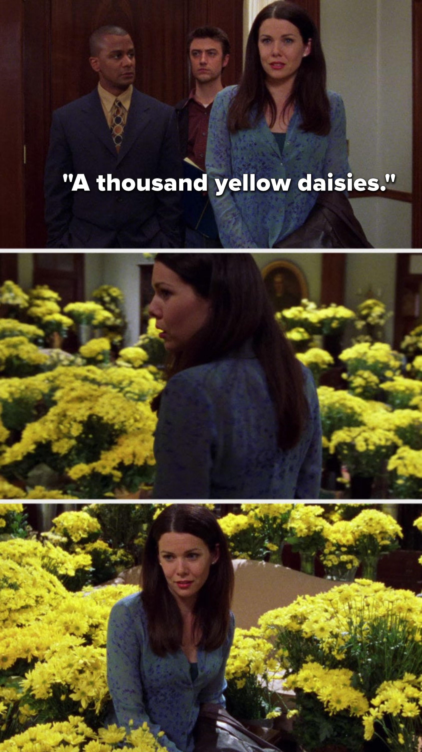 "Lorelai says, ""a thousand yellow daisies"" and she looks at all of them"