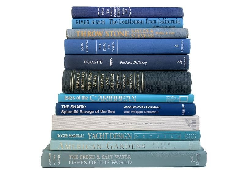 a stack of blue books