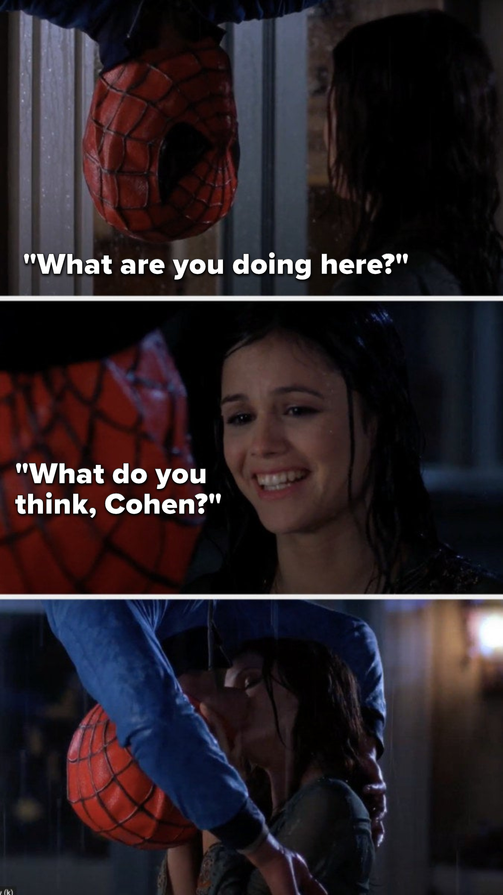 "Seth, handing upside down in a Spiderman mask, says, ""What are you doing here,"" Summer says, ""What do you think, Cohen"" and they kiss"