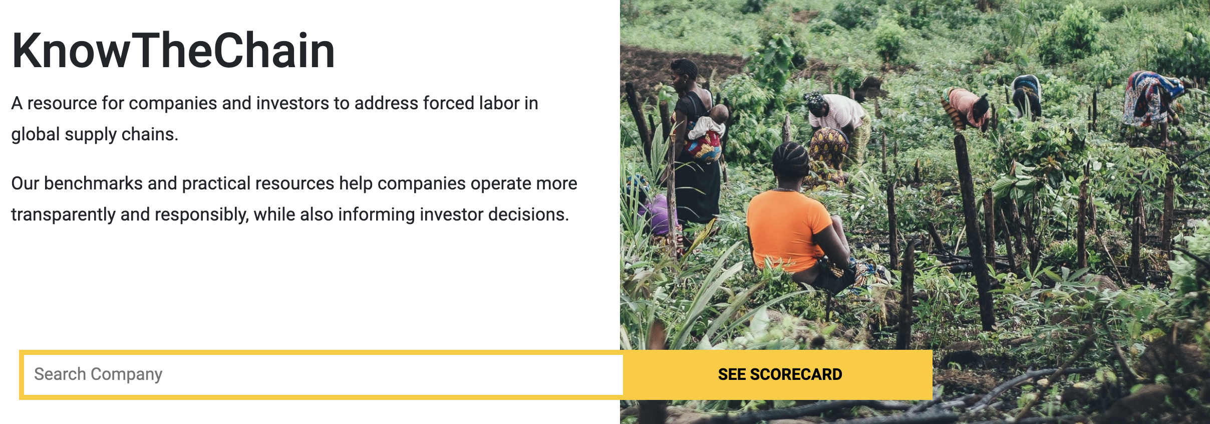 homepage with an image of a forest and a short description of the goal of helping companies operate with more transparency, as well as a company search bar