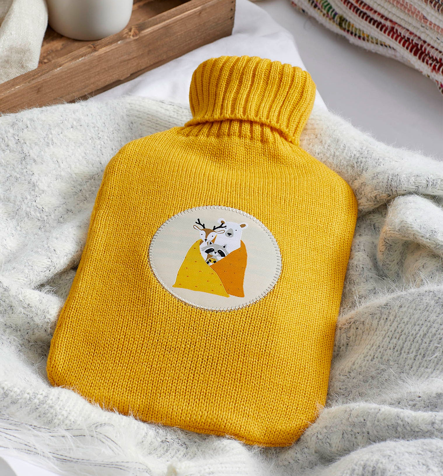 The hot water bottle on a blanket