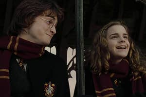 Harry and Hermione watching a quidditch game together