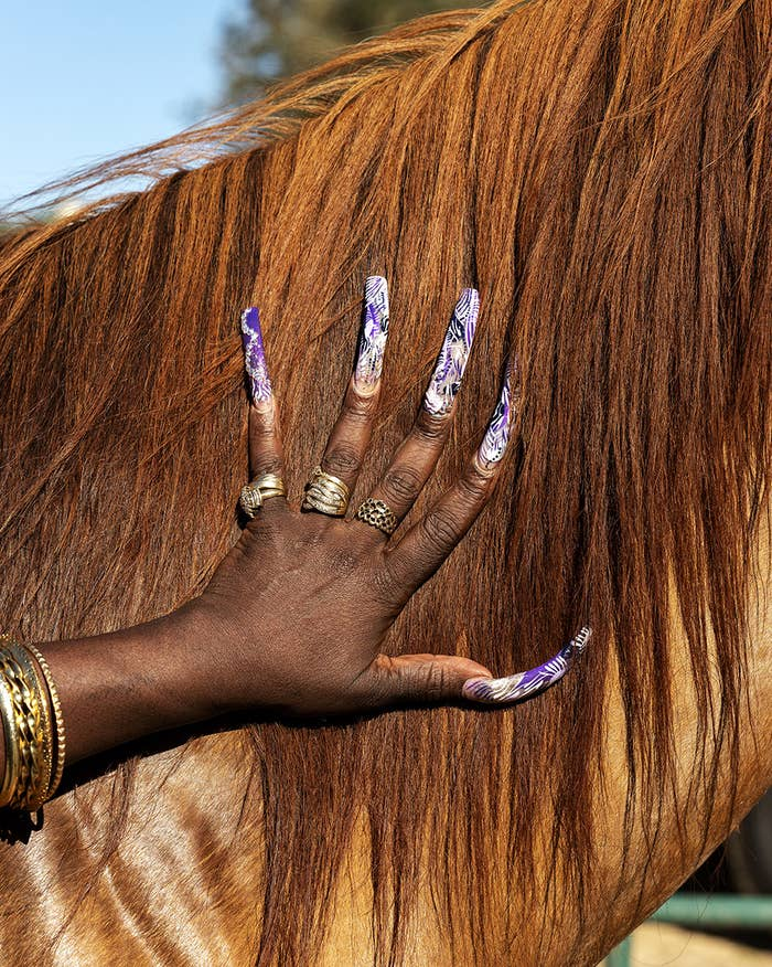 A woman's nails with gold jewelry petting a horse