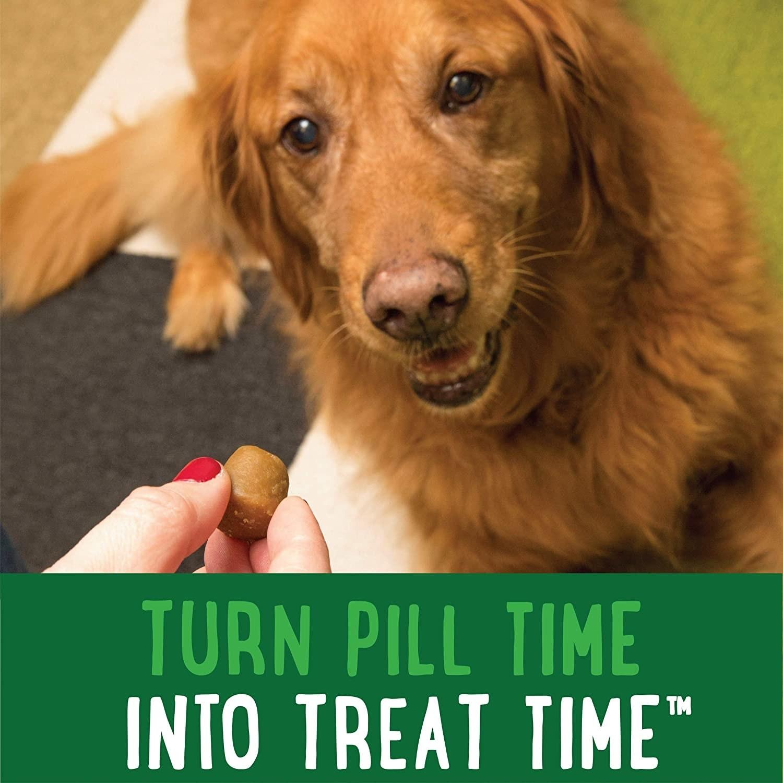 Dog looking happily at Pill Pocket.