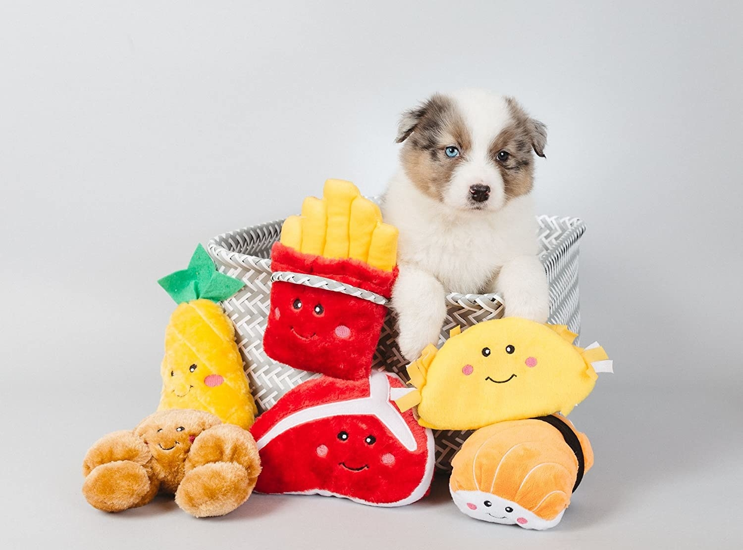 puppy with various food theme plush toys