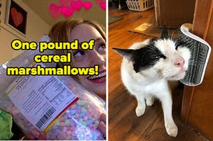 L: Happy reviewer holding a one-pound bag of marshmallows R: Cat rubbing its face on a wall-mounted brush