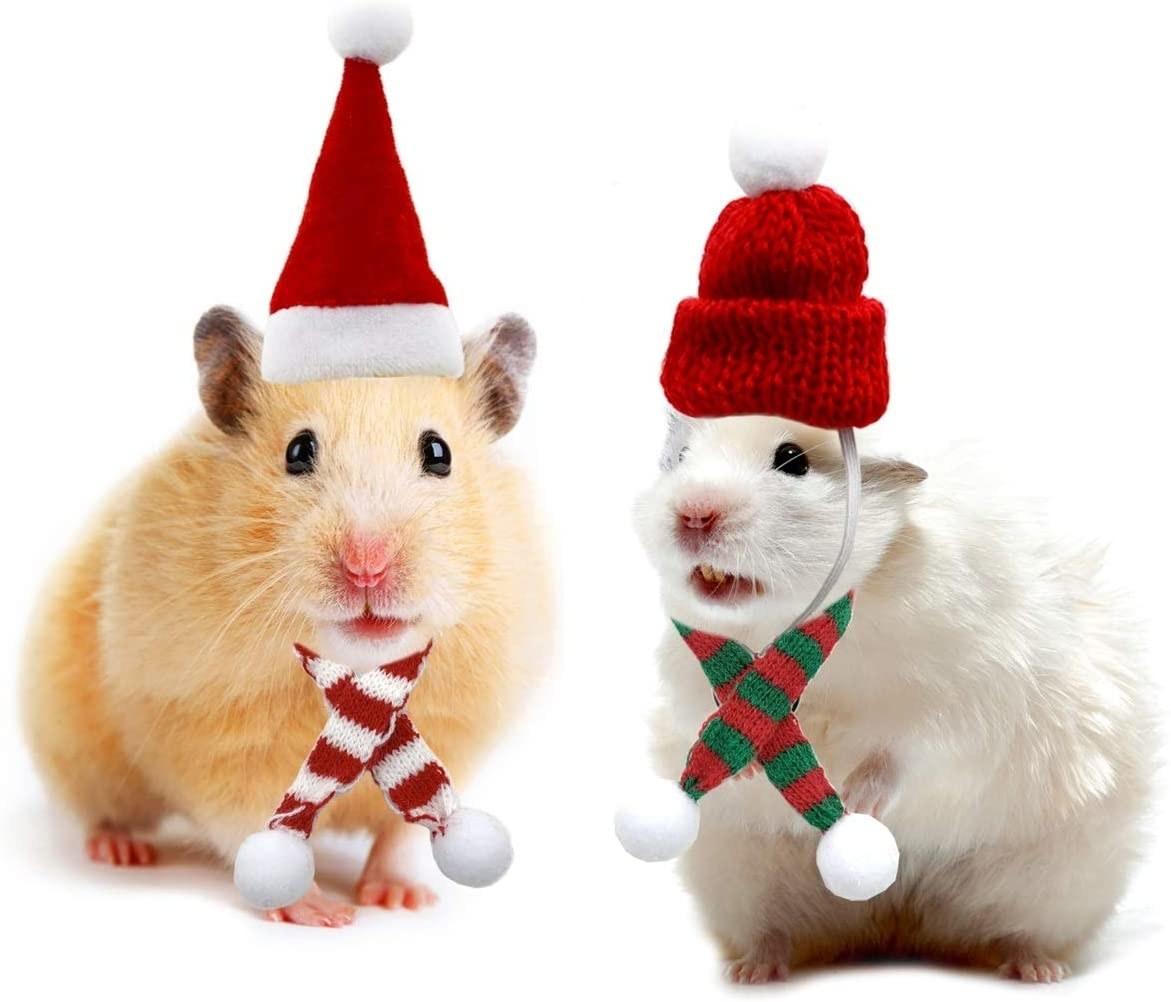 The Christmas costume