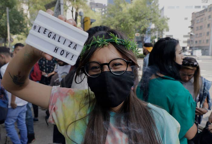 An image of a protestor at a march for the legalization of cannabis