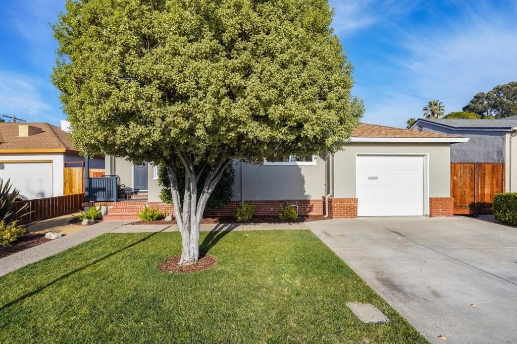 Tree in front of a single-level home in California