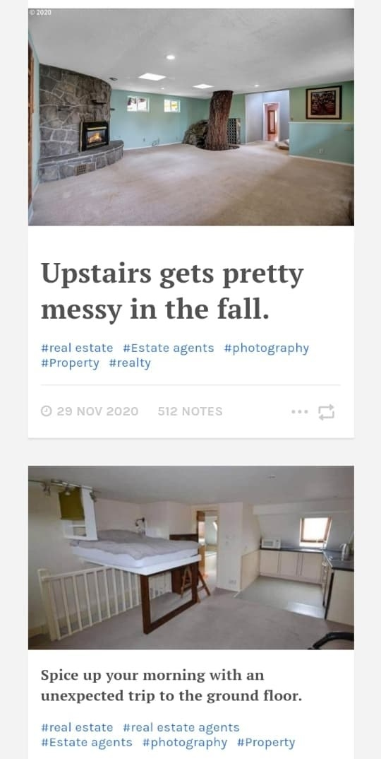 """Images on """"Terrible Real Estate Agent Photographs"""" showing a house with a tree through the floor and ceiling of the living room and a kitchen with a bed that folds out of the wall, over a stairwell"""