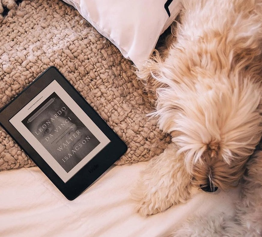 A Kindle next to a cute dog