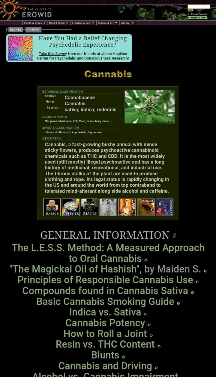 EROWID's page of information for cannabis