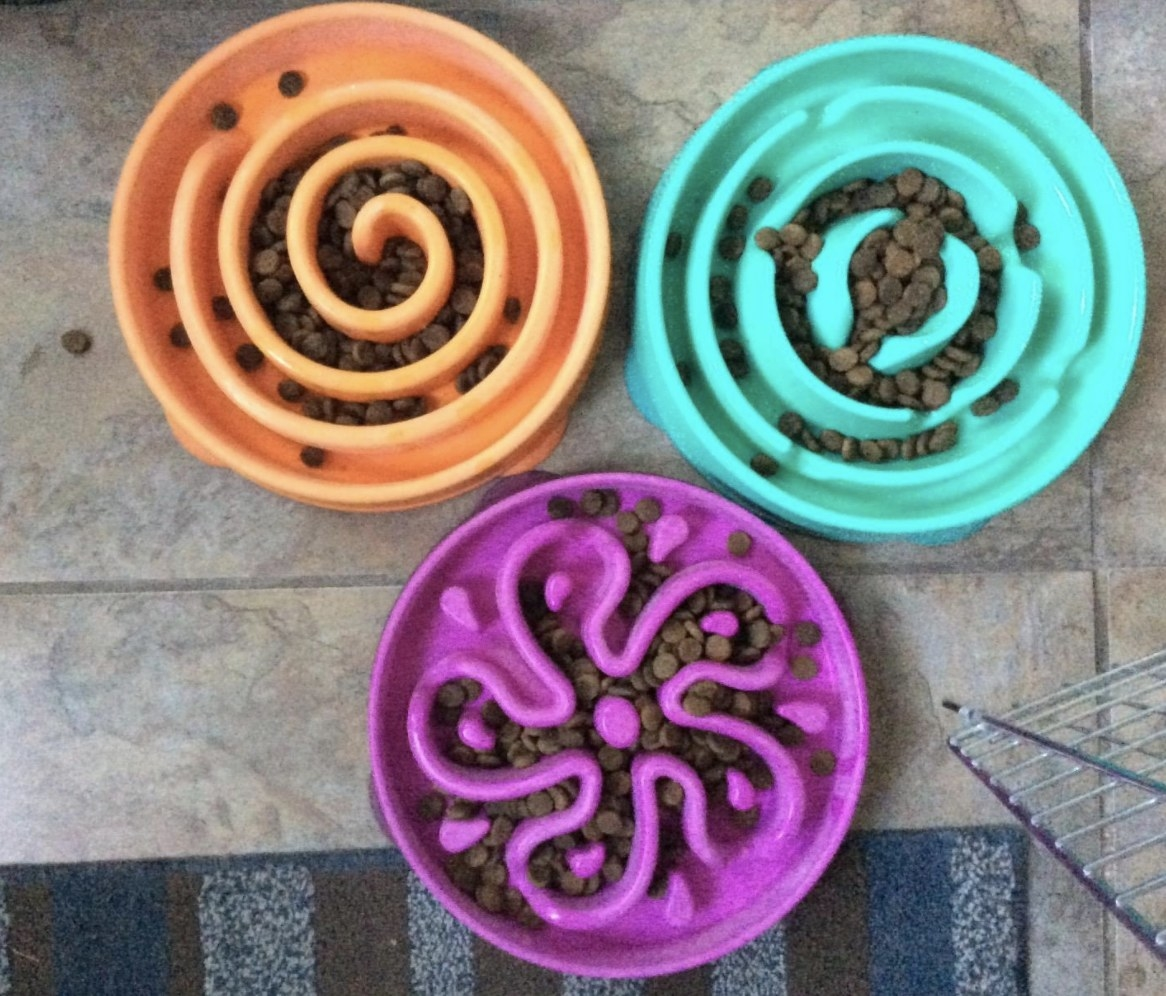 The slow feeders in different colors and styles
