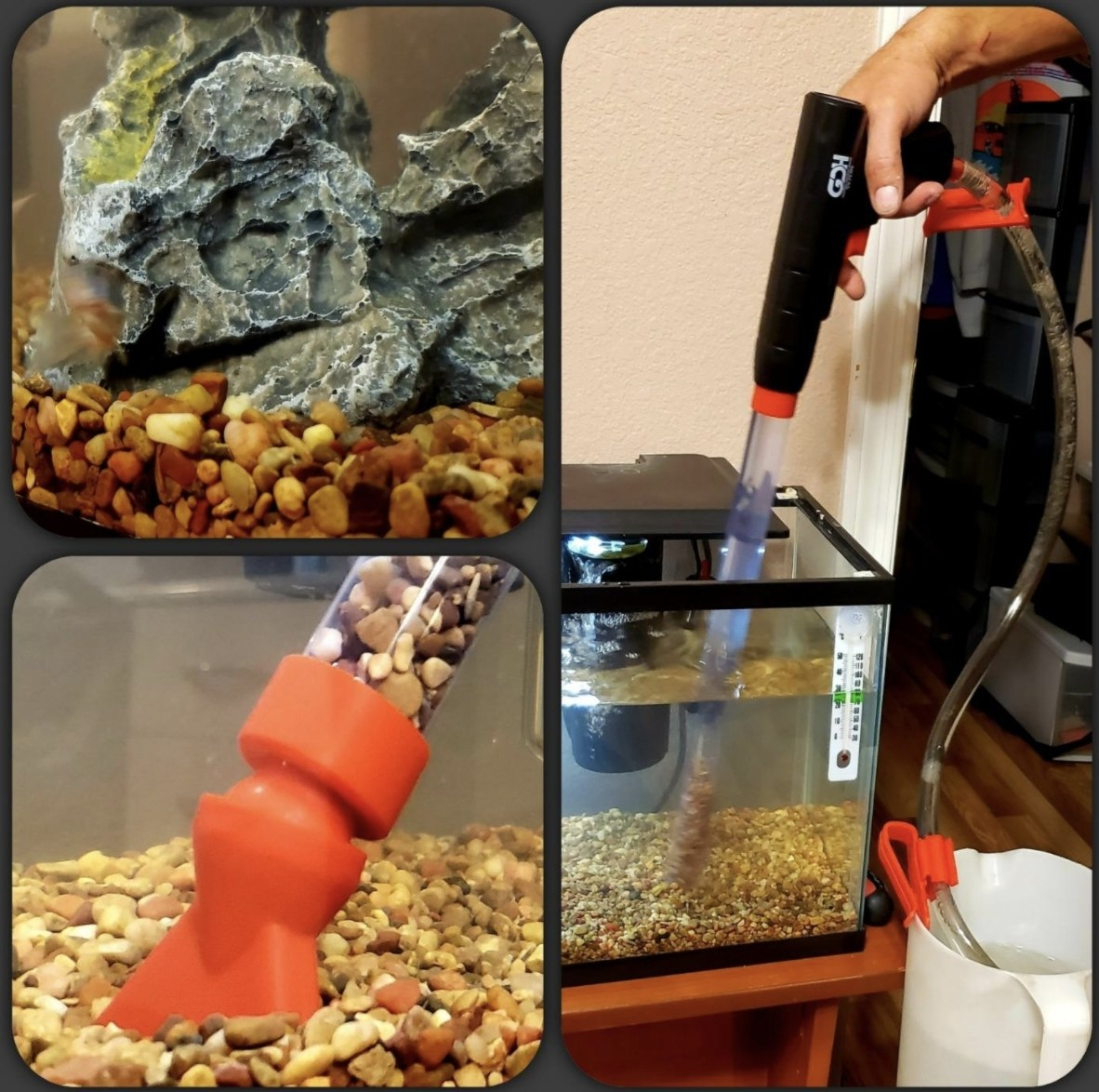 Person is vacuuming gravel in a fish tank