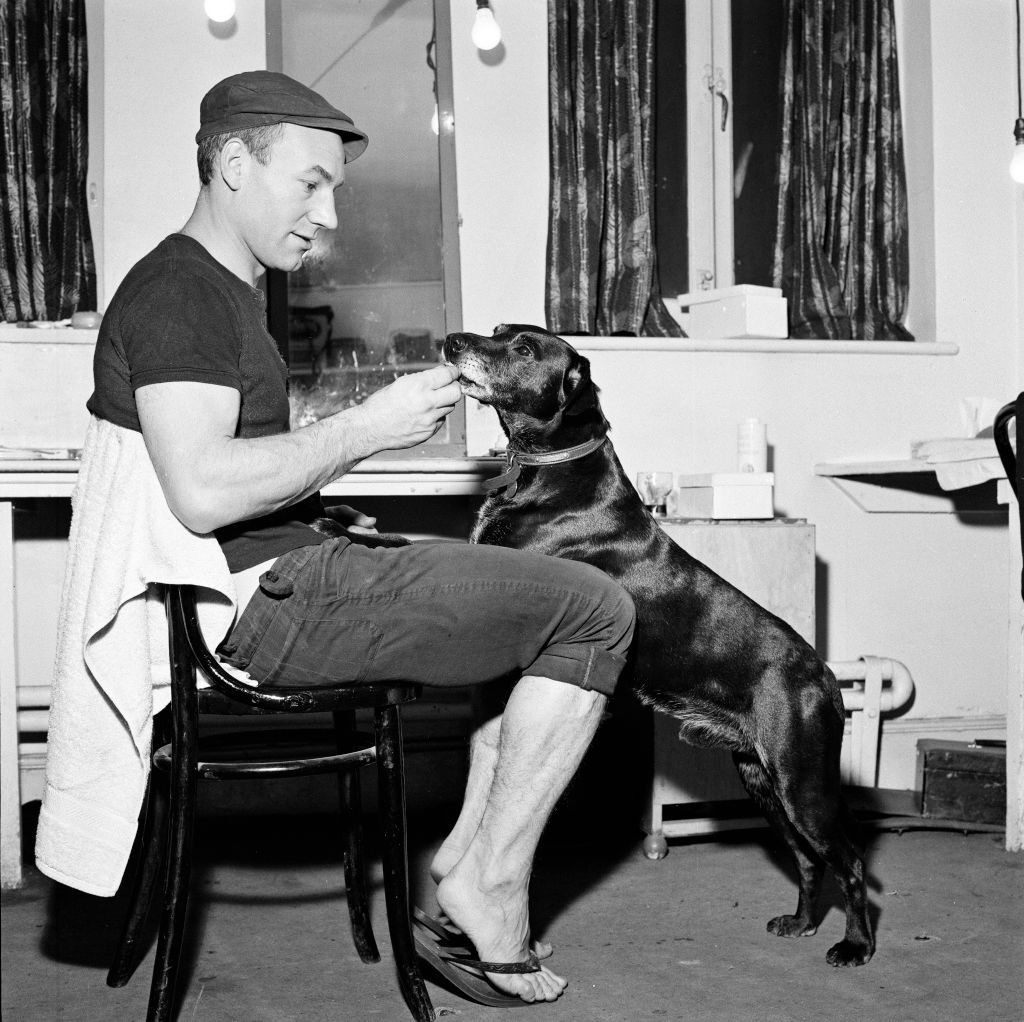 Patrick Stewart and a dog lookin all young