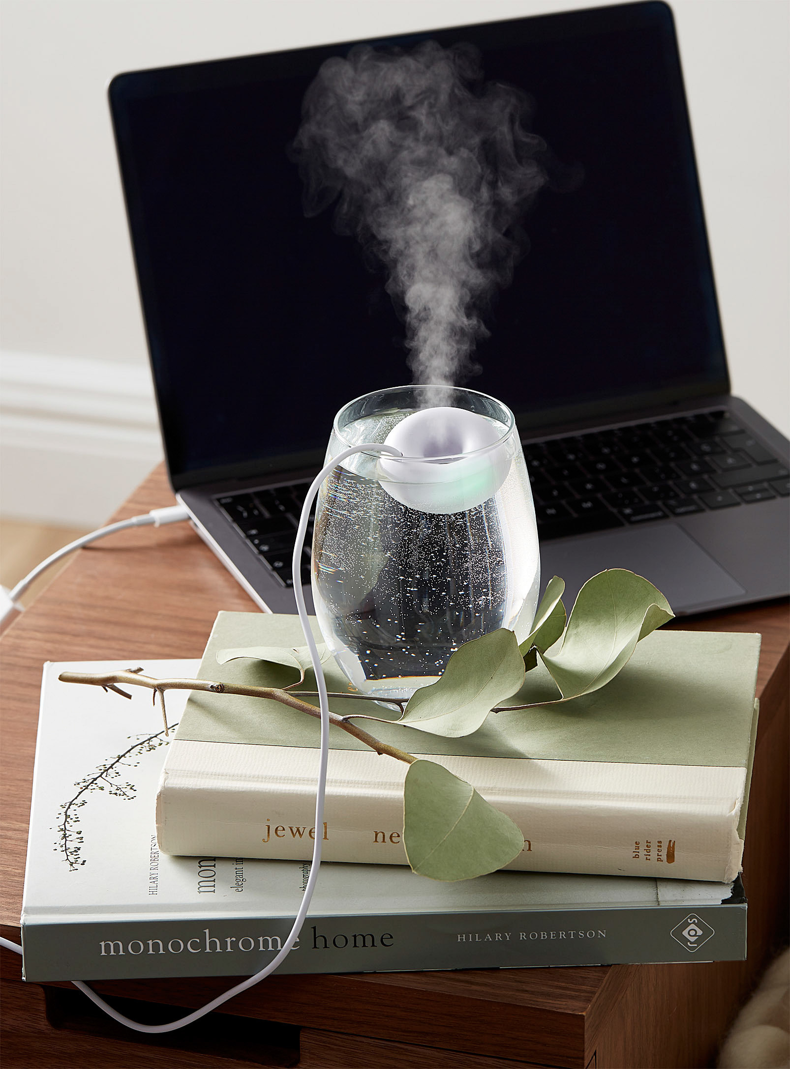 the humidifier in a glass of water on some books plugged into a laptop