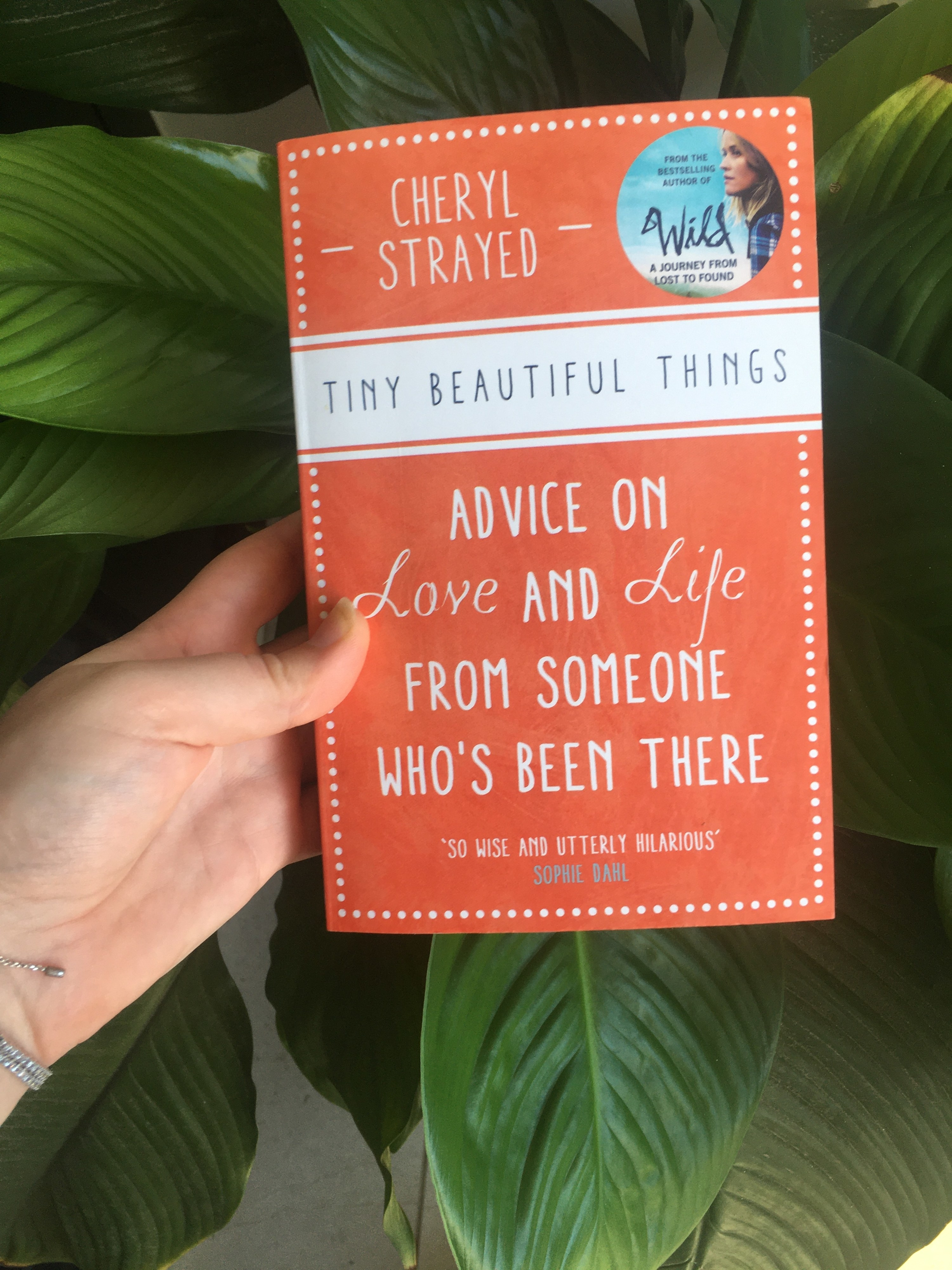 Book held in front of a plant with the cover taken up by title