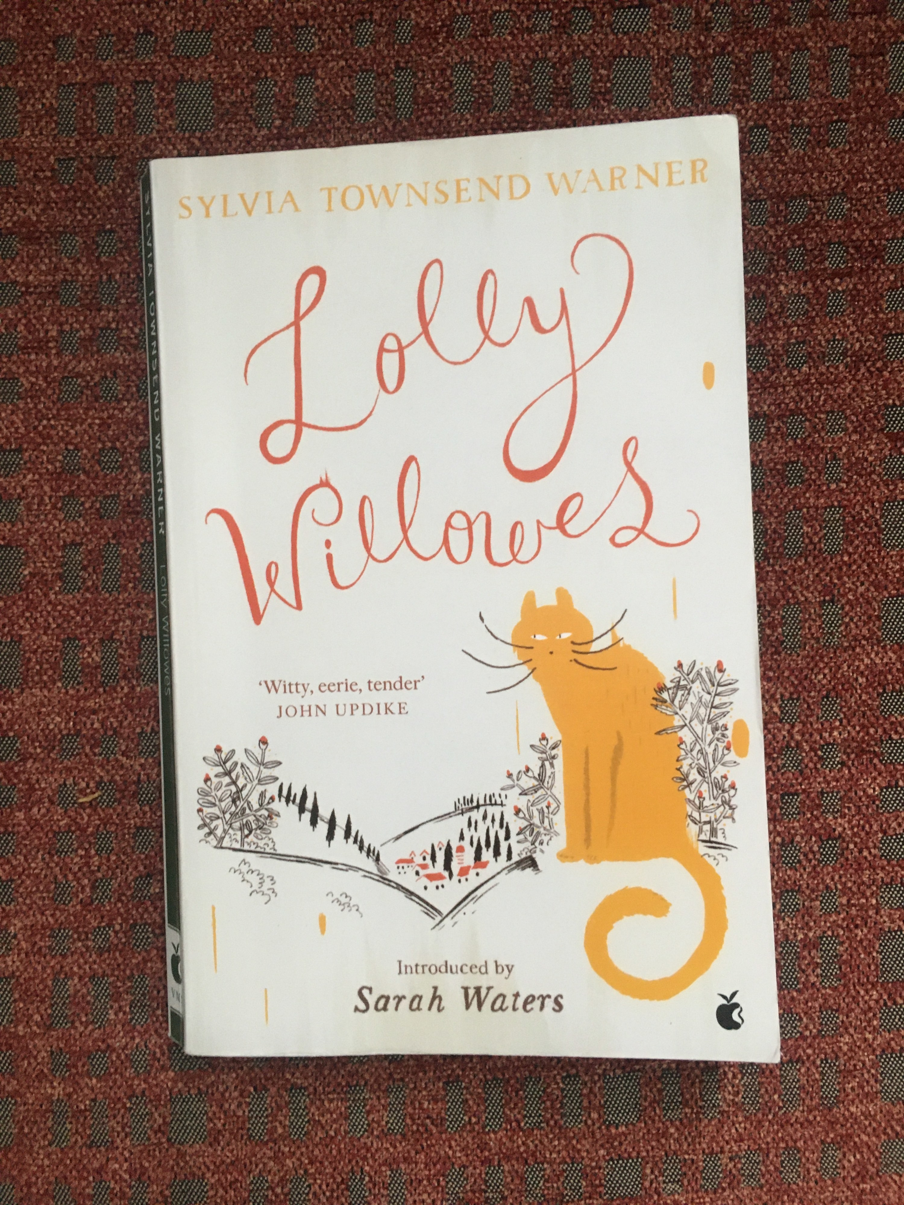 Book cover showing title written in cursive, a cat and a pen drawing of a village nestled in the hills