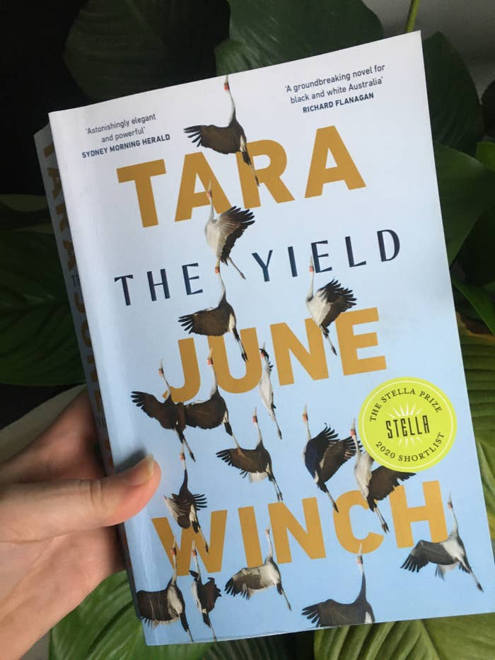 """Book held in front of the plant showing birds flying from the bottom to the top of the cover; sticker on the front saying """"The Stella Prize 2020 Shortlist"""""""