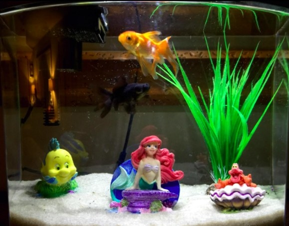 white sand on the bottom of a fish tank with little mermaid decorations