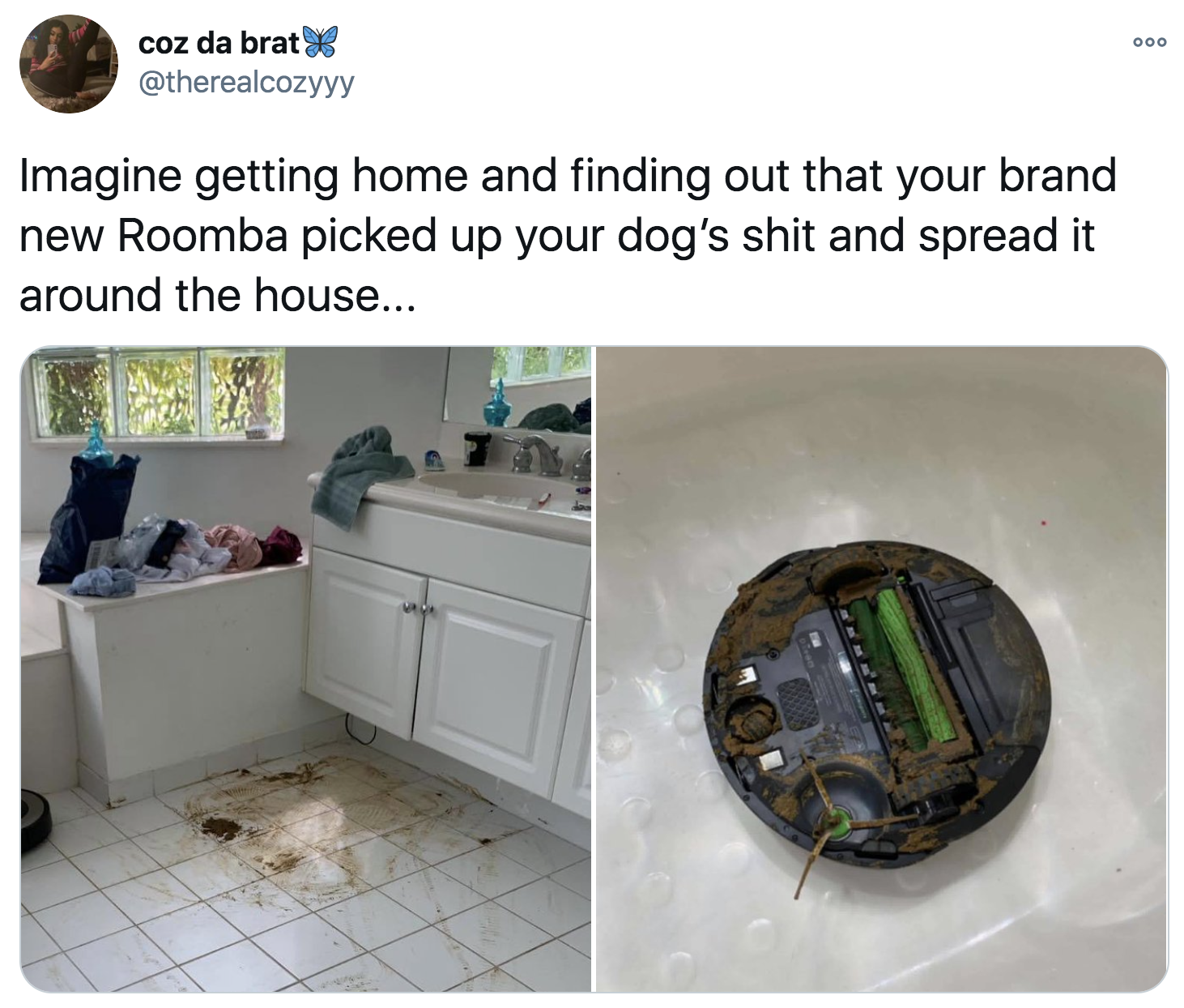 tweet reading Imagine getting home and finding out that your brand new Roomba picked up your dog's shit and spread it around the house...