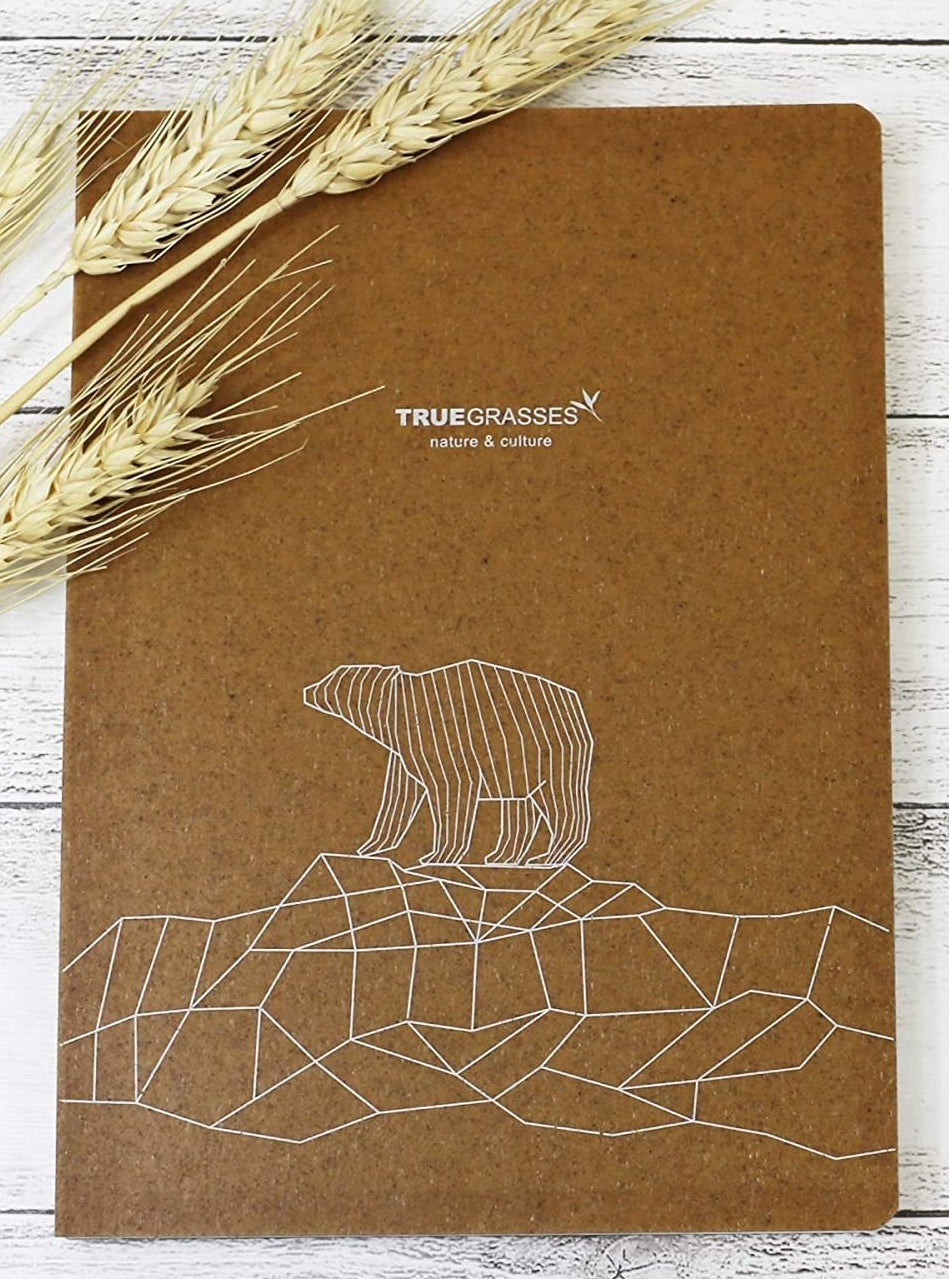 The notebook with a cute bear standing on geometric shapes etched into it
