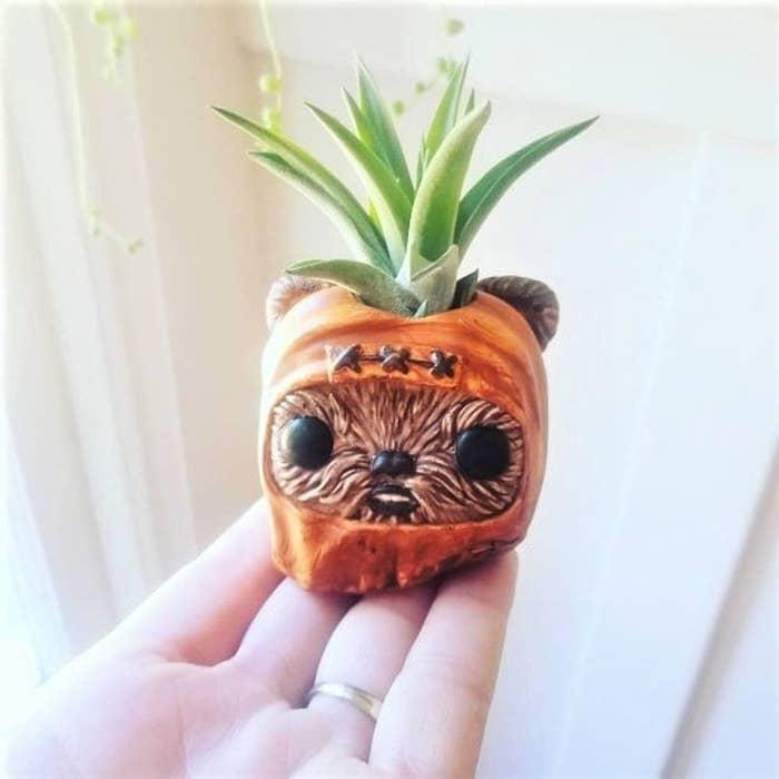 Ewok air plant and planter