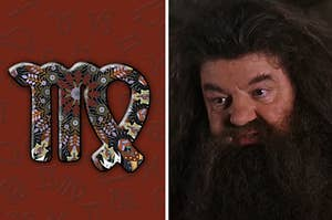 An abstract Virgo sign is on the left with Hagrid on the right