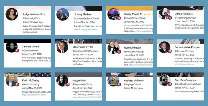 The user bios for fake accounts masquerading as Judge Jeanine Piro, Lindsey Graham, Sidney Powell, Donald Trump Jr, Candace Owens, Mike Pence, Rush Limbaugh, Mike Pompeo, Kevin McCarthy, Megyn Kelly, Kayleigh McEnany, and Dan Crenshaw
