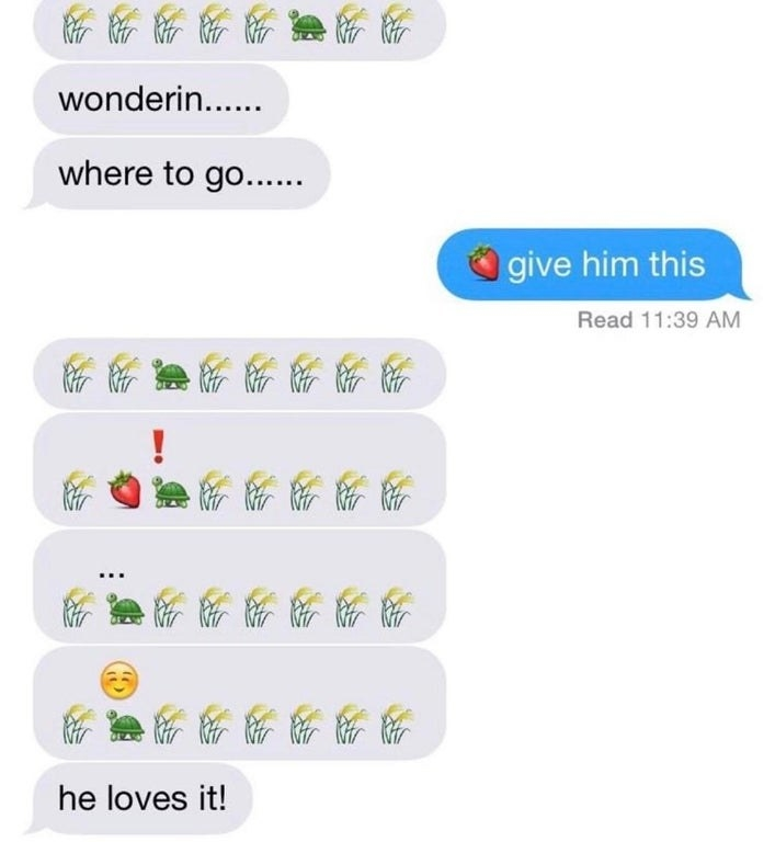 emoji story of a turtle eating a strawberry