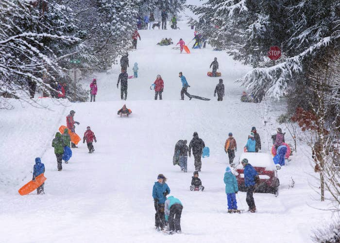 Children and adults use sleds on a snowy hill