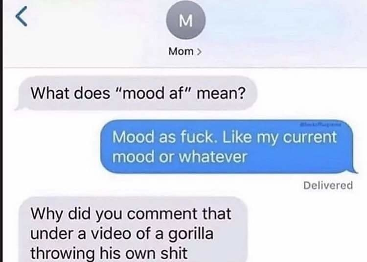mom asking what does mood af mean and the person explains it and they ask why did you comment that under a video of a gorilla throwing shit