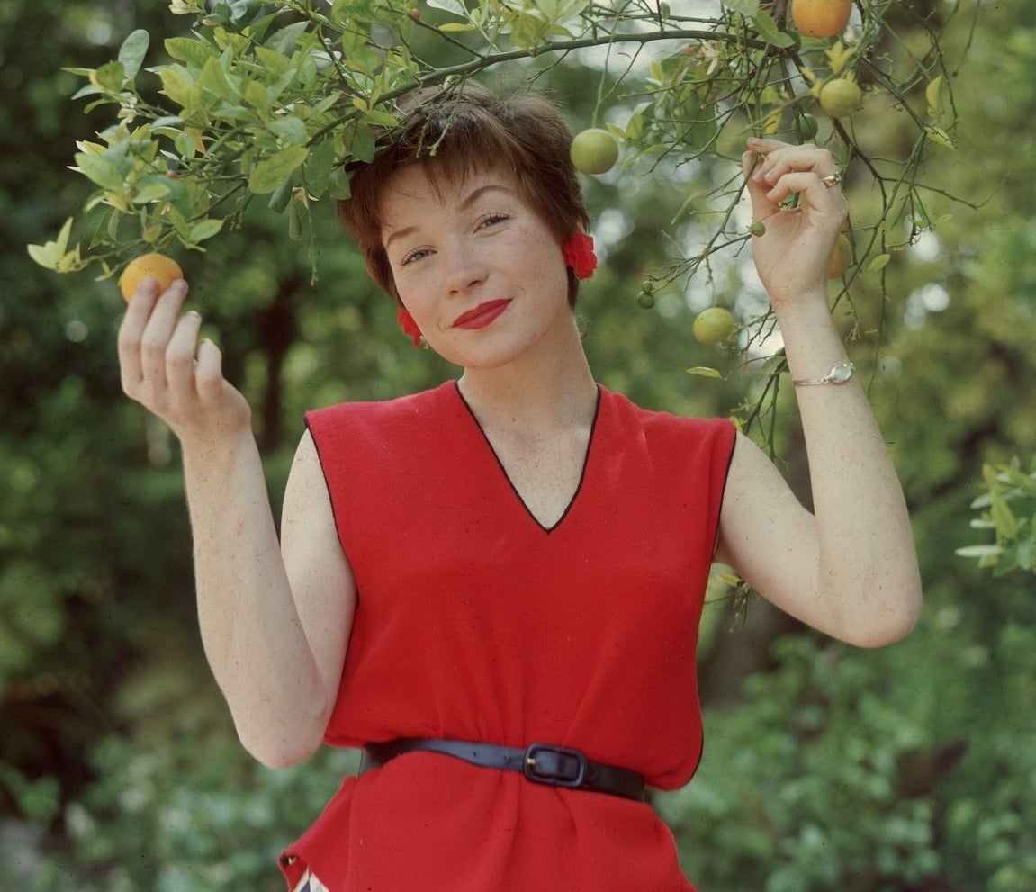 Shirley MacLine in a red top picking holding an orange tree branch