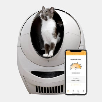 The silver litter box and a smartphone open to the compatible app