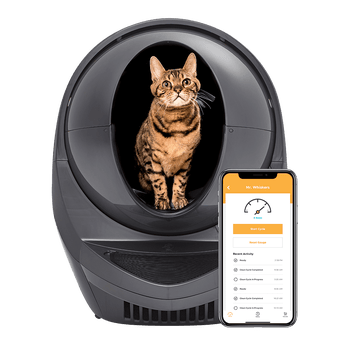 The black litter box and a smartphone open to the compatible app