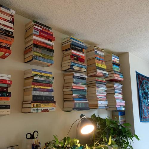 Ten hidden bookshelves holding books