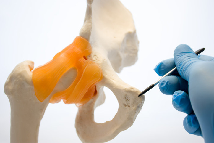 Image of the pubic bone.