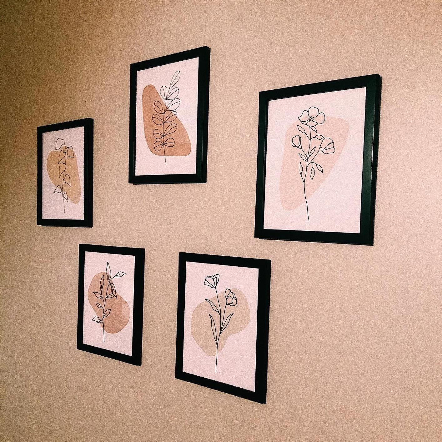 Five framed prints of line drawn flowers and leaves