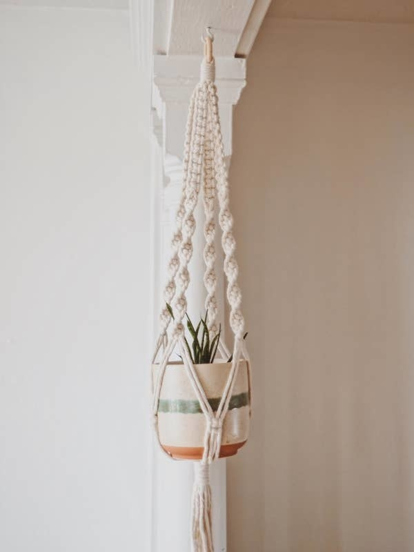 The macrame hanger holding a plant