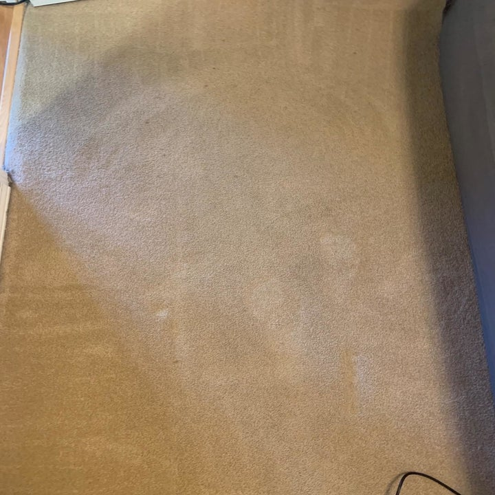 Reviewer's photo of their carpet after vacumming