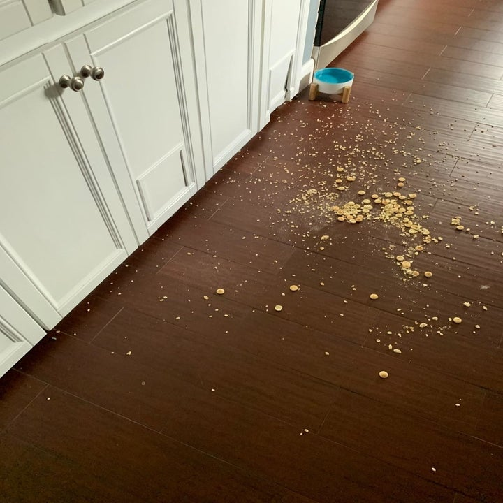 Reviewer's photo of their hardwood floor with crumbs before using the floor cleaner