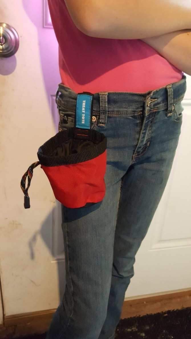 The Chuckit treat tote in red