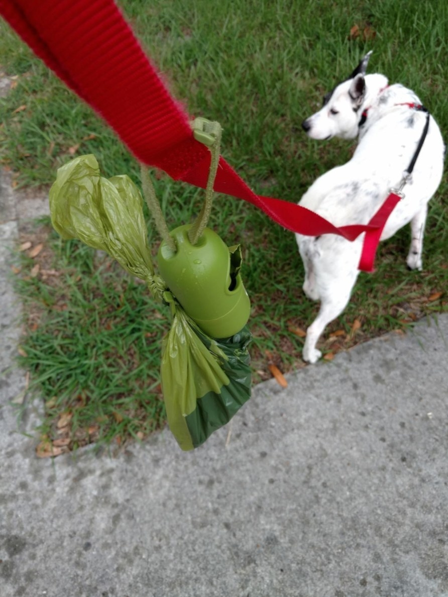 The poop bags tied to a reviewer's leash