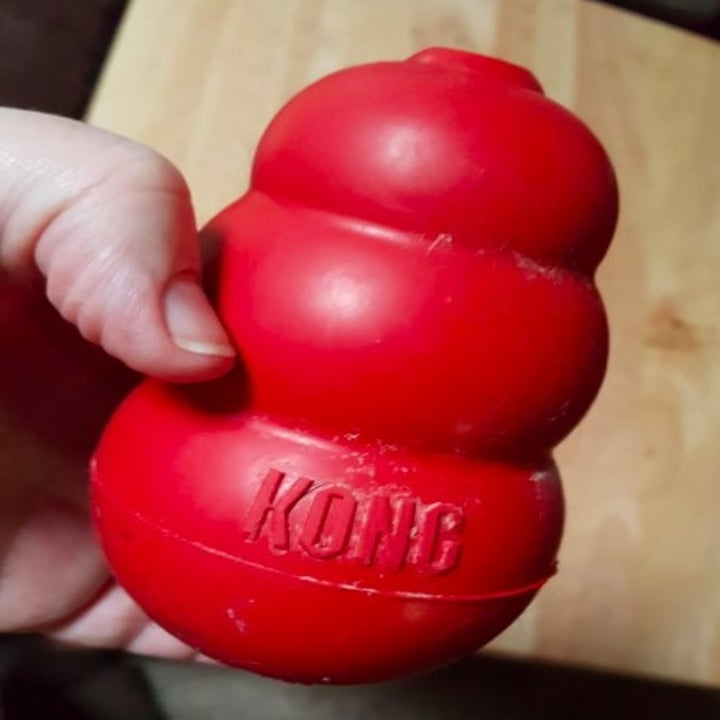 person holding up a red kong hollow toy